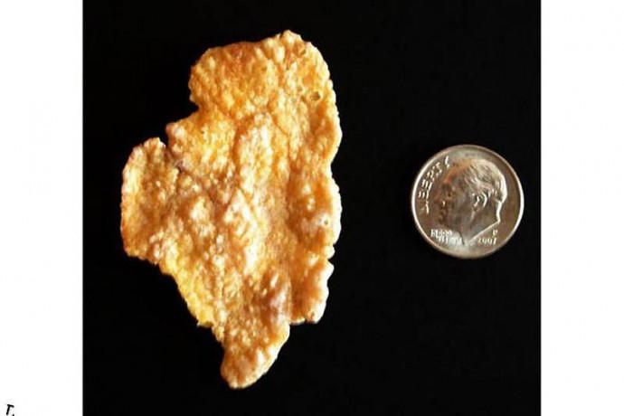 Кукурузная хлопинка в форме штата Иллинойс