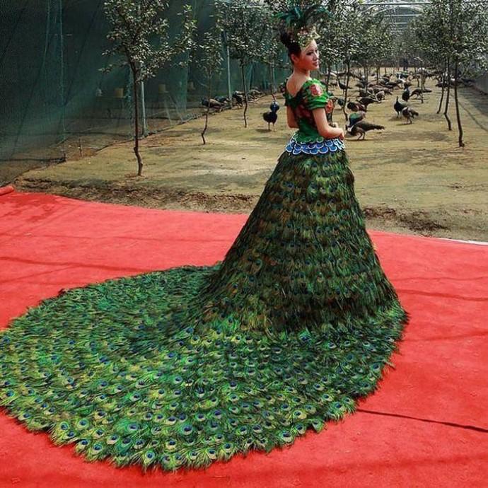 Платье из павлиньих перьев